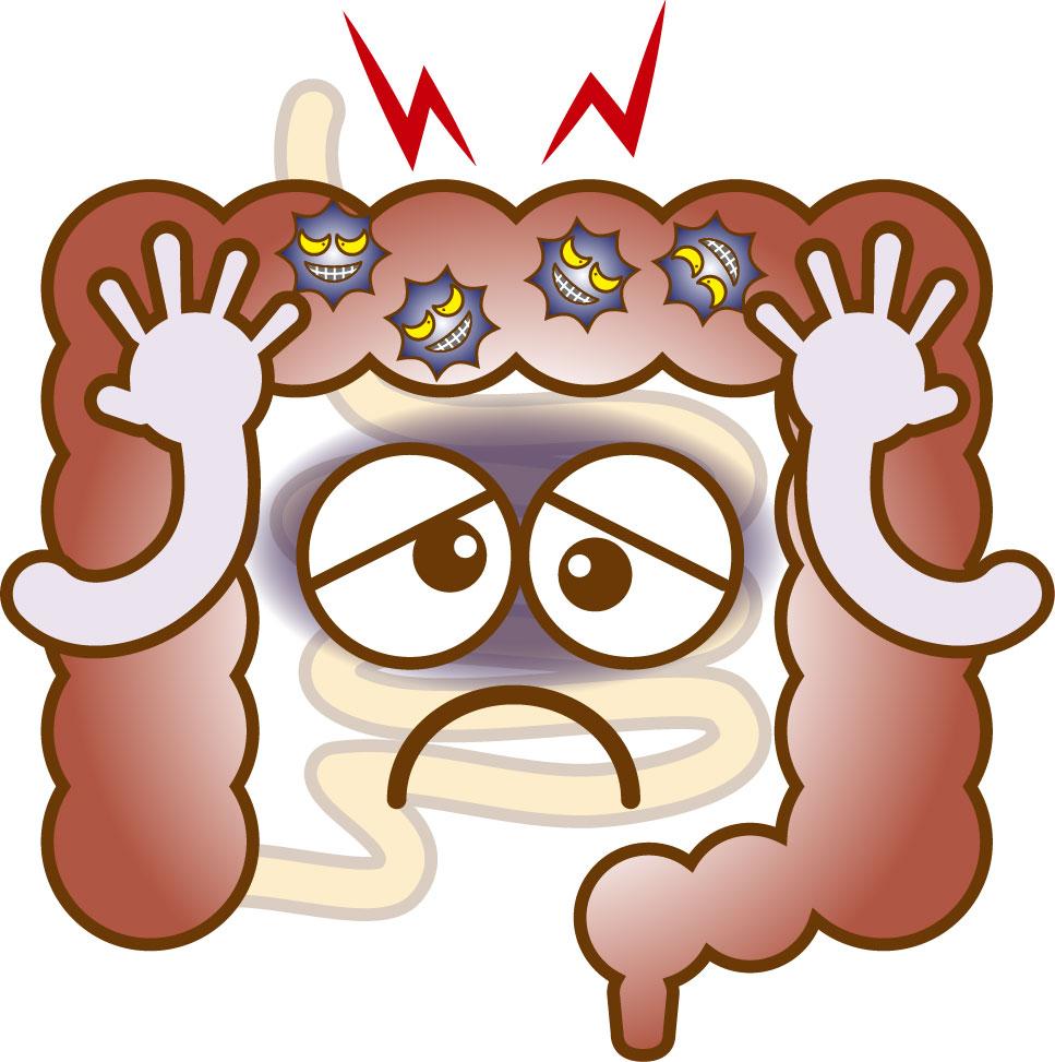 腸と脳の関係って?5つの腸ストレスを減らしていこう