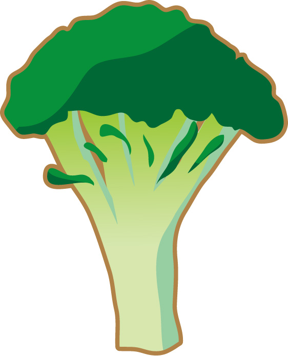 腸内免疫力を高めるブロッコリー成分ブロリコとは?